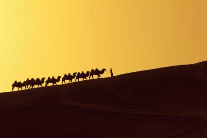 EBRD to work together with Silk Road Fund   Global Trade