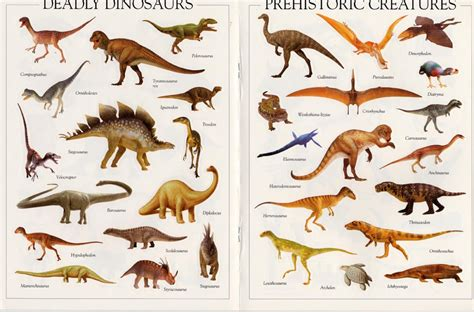 Dinosaur Pictures - Kids Search