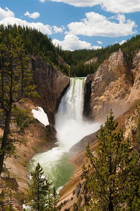 Yellowstone National Park   A1 Pictures