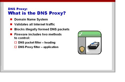 What are DNS and the DNS Proxy?