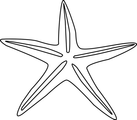 Library of sea shells star fishon beach clipart free png
